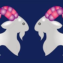 Совместимость: женщина-Козерог и мужчина-Козерог