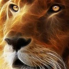 Когда влюбляется Лев
