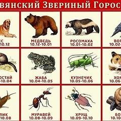 Славянский гороскоп по дате рождения: особенности, характеристика знаков