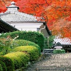 Искусство создания японского сада