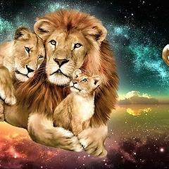 Мужчина Лев — план укрощения строптивого